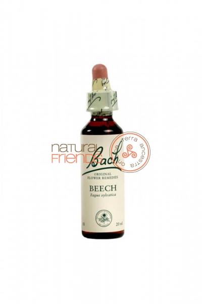 Beech 20ml