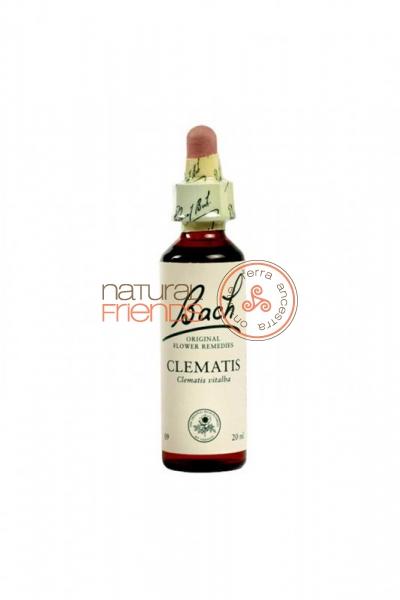 Clematis 20ml